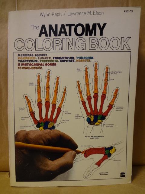 解剖学書塗り絵